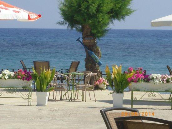 Mimoza Beach Bar : Nice view