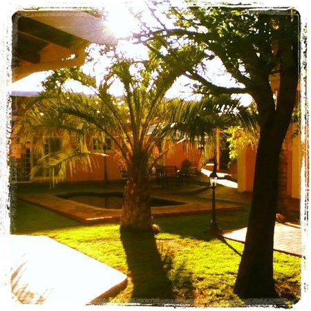 Casa Piccolo: Garden