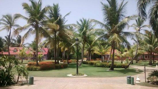 Caribe Club Princess Beach Resort & Spa: Parque