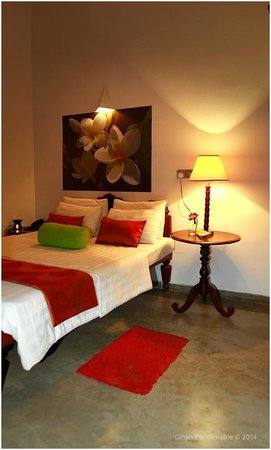 The Reed Boutique Hotel : Standard Bed Room