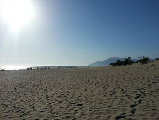Patara Beach : endless sand