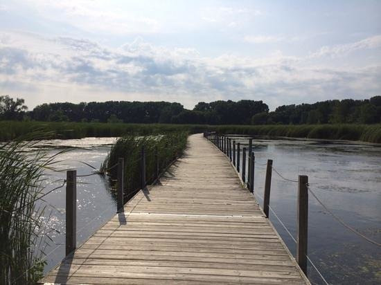 Richfield, Миннесота: board walk/bridge crossing marsh