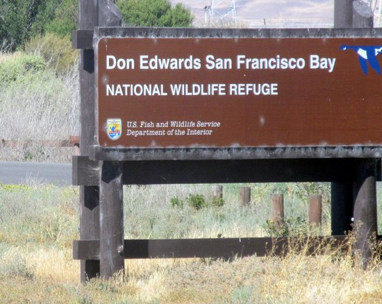 Don Edwards San Francisco Bay Wildlife Refuge