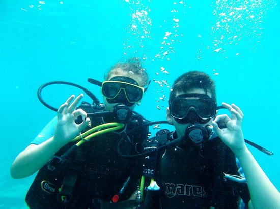 Infinity Ocean Diving - Private Diving: Tout est Ok