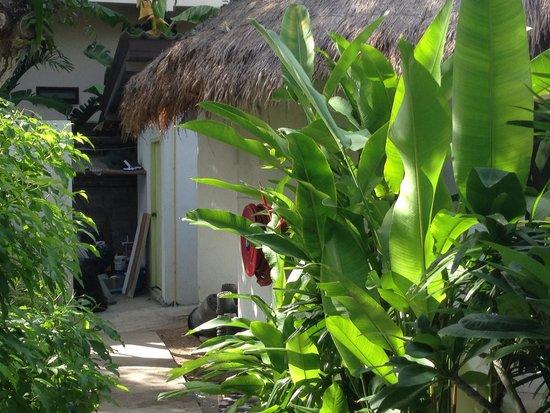 Eden Beach Bungalows: Atelier à côté du bungalow familial