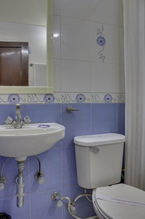 The Blooms Hotel: Washroom