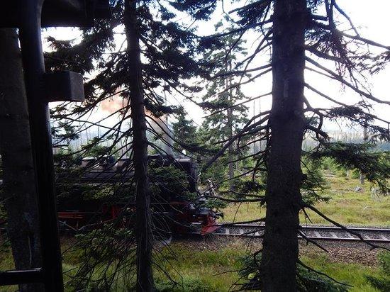 Harzer Schmalspurbahnen: zwillingsbahn
