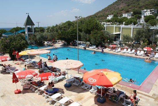 Club Aphrodite Holiday Village : Club Afrodit Havuz