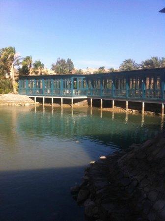 Club Paradisio Hotel El Gouna: Marco polo restaurant
