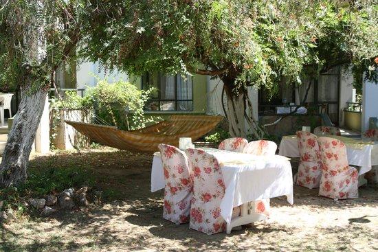 Club Aphrodite Holiday Village : Club Afrodit Sabah Kahvaltı