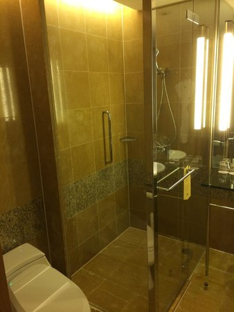 Ambassador Hotel Hsinchu: Bathroom (shower)