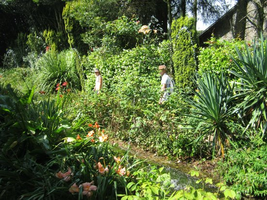 Parc picture of parc botanique de haute bretagne le chatellier tripadvisor - Parc botanique de haute bretagne ...