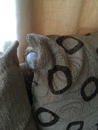 Siblu Villages - Domaine de Kerlann : The cushion covers