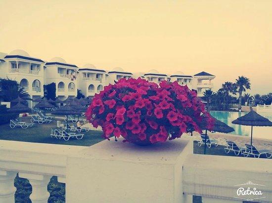 Golden Tulip Taj Sultan Resort: Views