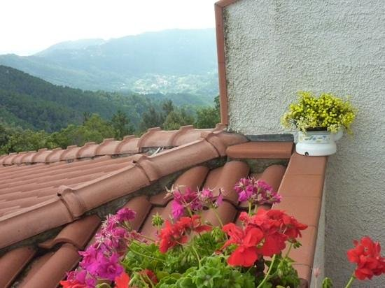 Albergo Ristorante Ceru: beautiful view