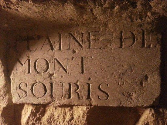 The Catacombs of Paris: Gravé dans le mur