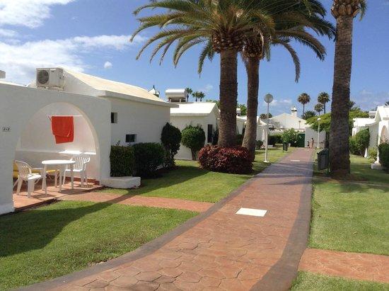 Canary Garden Club: Room 5.3 garden view