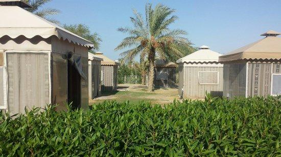 Al Jahra Copthorne Hotel & Resort: خيم برايفت شيشة و شاي