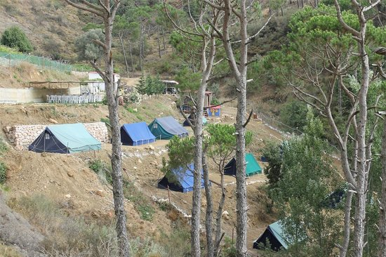 Pinea Campus: The campground