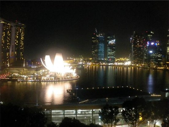 The Ritz-Carlton, Millenia Singapore: View