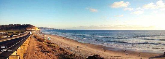 Torrey Pines State Beach Panorama View Of