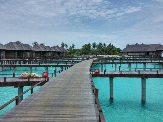 The Sun Siyam Iru Fushi Maldives: Water Villas