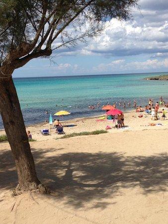 Camping Torre Castiglione: Spiaggia