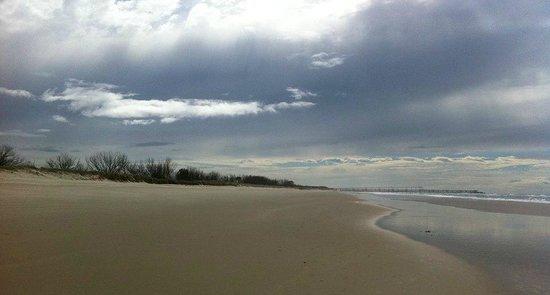 Sea World Resort: Beautiful Beach opposite Resort