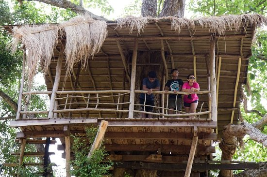 Ella Jungle Resort: Tree House
