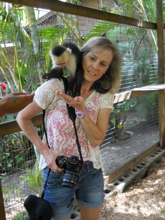Bodden Tours: Victor's Monkey Business