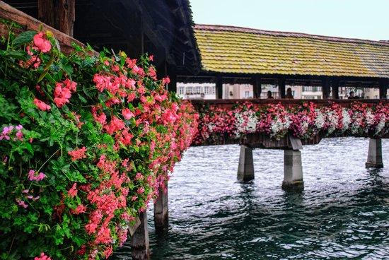 Chapel Bridge (Kapellbrucke): Flowers on the bridge