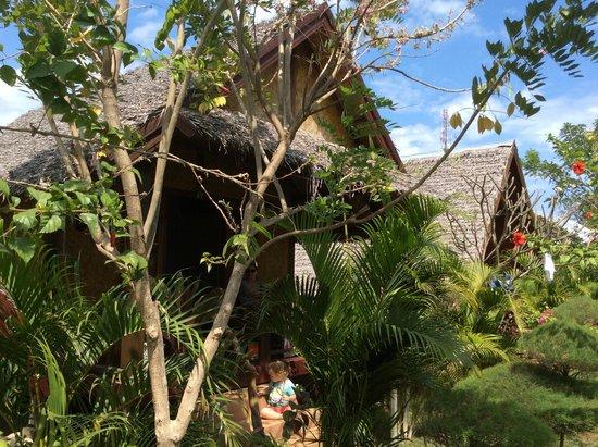 Tropicana Bungalows: the bungalow
