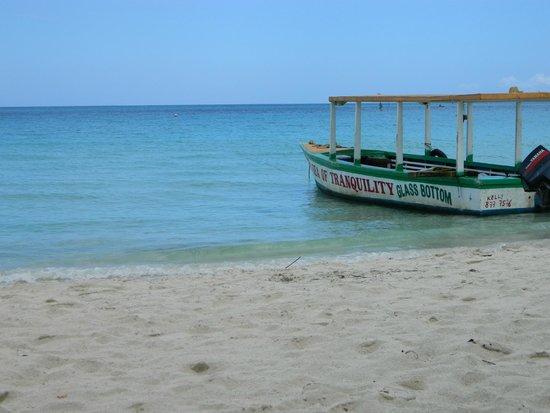 Travellers Beach Resort: Glass Bottom Boat