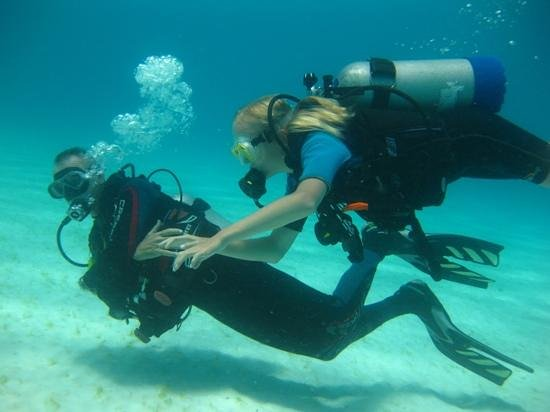 VIP Diving: discovery dive onder top begeleiding!