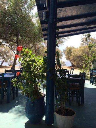 Taverna Kastraki Paradise: tavoli all'aperto