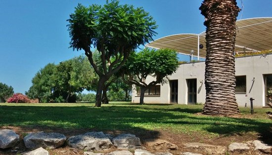 Club Alicudi Hotel : a coté de piscine