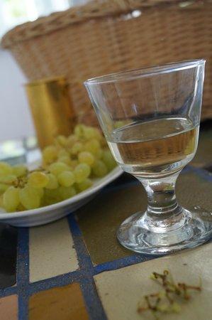 Grapes and Wine Villa Ippocampi
