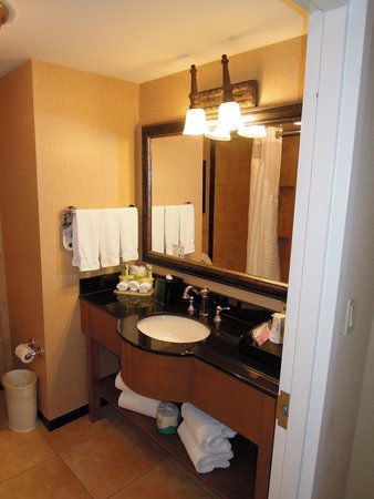 Holiday Inn Express Savannah-Historic District: Bathroom