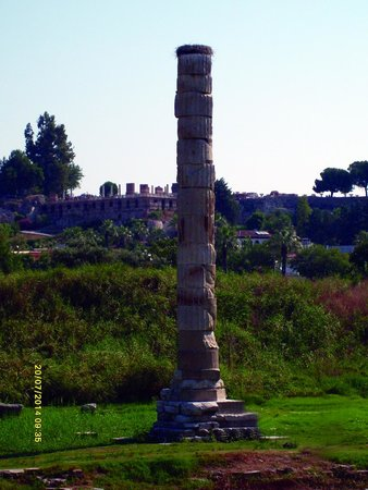 The Temple of Artemis (Artemision) : Temple of Artemis ruins