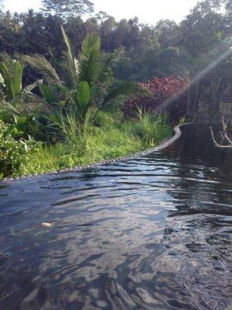 The Royal Pita Maha: blick in den Spa pool