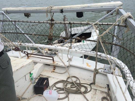 Skipjack -Rebecca T. Ruark Charter: pushboat