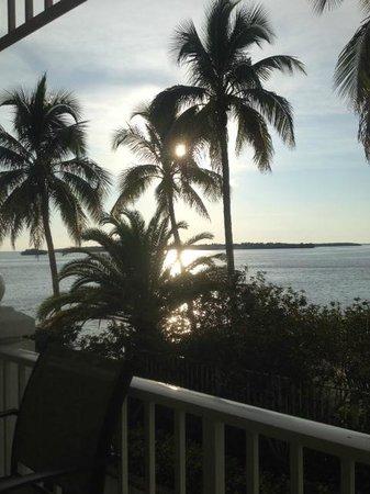 Sanibel Harbour Marriott Resort & Spa : View from restaurant bar