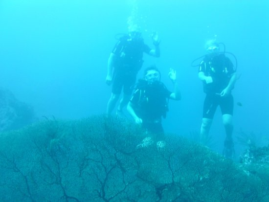 Jukung Dive: With Junkung dive :)
