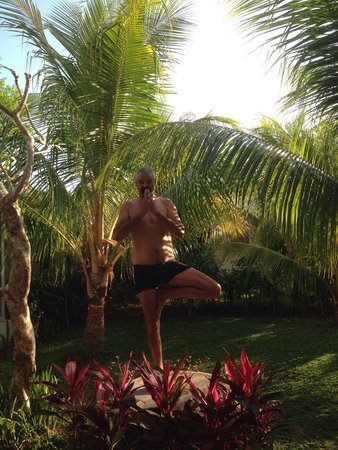 Villa Adi Amed: Yoga fun in the luscious garden!