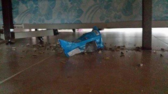 Evenia Hawai: Sowas lag unterm Bett