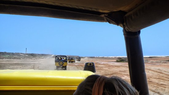 De Palm Tours: rough, rugged and raw