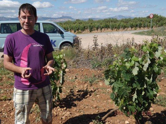 Riojatrek: our guide explaining grape cultivation