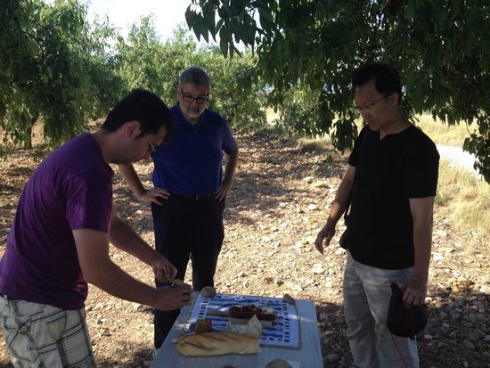 Riojatrek: picnic under the almond trees