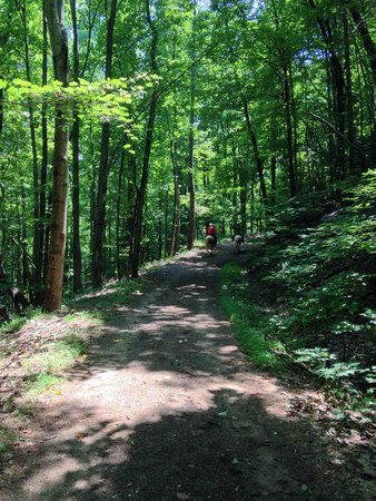 South Mountains State Park: Saddle brook trail