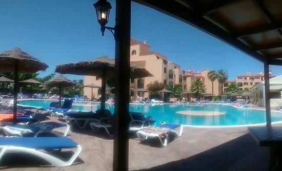 Eden Village Siesta Playa : Vista della piscina dalla zona ristorante